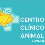 Centro Clínico Animal,Guimarães